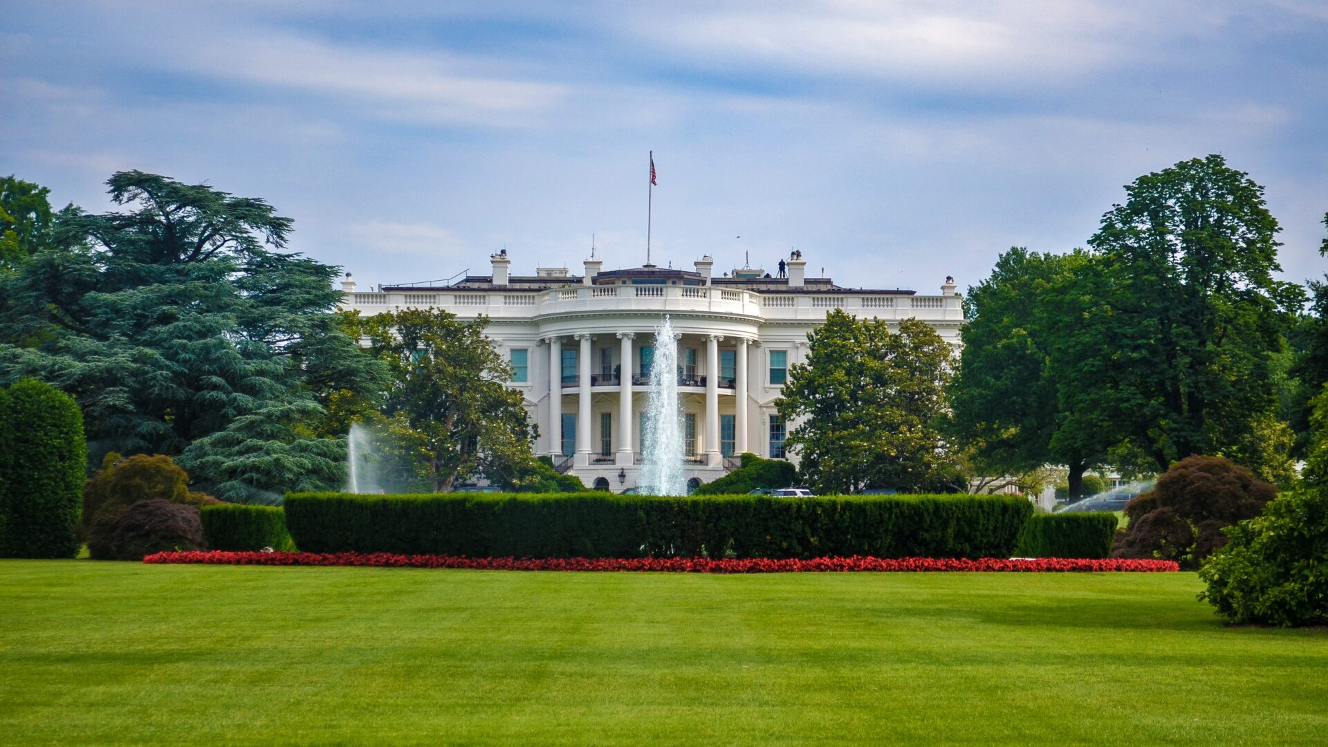 white house and green grass
